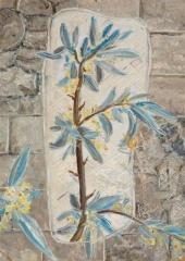 Читая античных авторов. Ветка маслины
