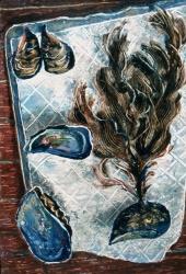 Раковины мидии и водоросли